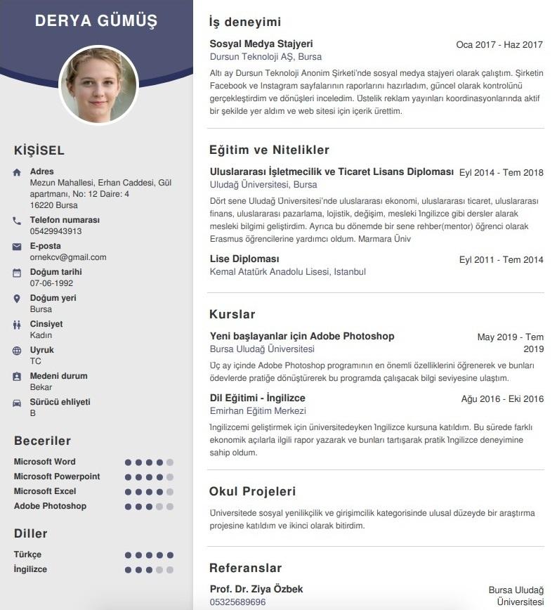 CV dil becerilerinizi